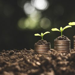 Tips for managing small business finances